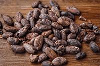 Cacao en mam