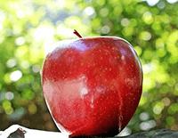 manzana en idioma mam
