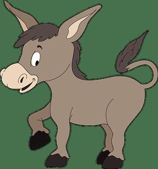burro en chuj
